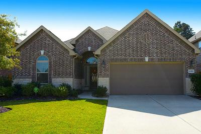 Porter Single Family Home For Sale: 21350 Russell Chase