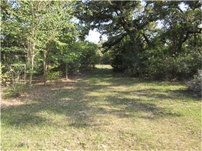 Sheridan TX Farm & Ranch For Sale: $295,000