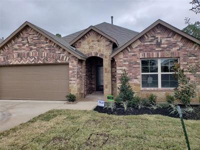 Porter Single Family Home For Sale: 21445 Elk Haven