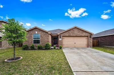 Humble Single Family Home For Sale: 20514 Faith Millstream Drive