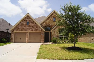 Pearland Single Family Home For Sale: 3712 Cibolo Court