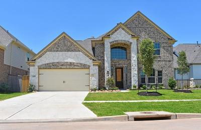 Sugar Land Single Family Home For Sale: 6235 Garden Lakes Lane