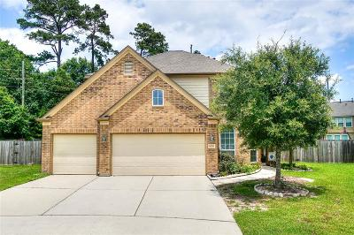 Single Family Home For Sale: 24730 Broad Branch Court