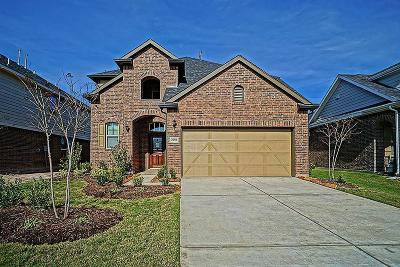 Katy Single Family Home For Sale: 25002 Blue Mountain Park Lane