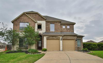 Tomball Single Family Home For Sale: 22606 Wixford Lane
