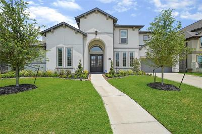Friendswood Single Family Home For Sale: 2207 Pleasant Hill Drive