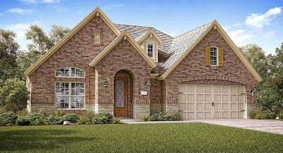 Pearland Single Family Home For Sale: 3545 Morning Hill Court