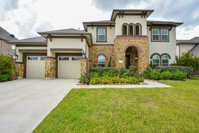 Katy Single Family Home For Sale: 1222 Falling Water Lane