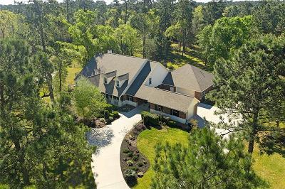 Magnolia Single Family Home For Sale: 9703 Azure Lake Drive