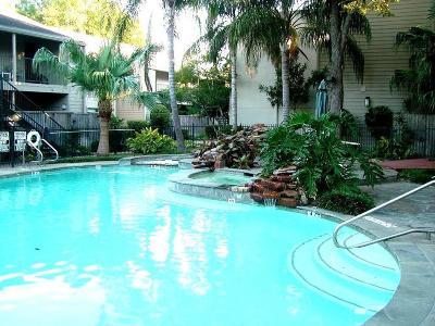 Houston Condo/Townhouse For Sale: 1100 Augusta Drive #78