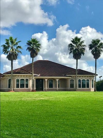 Angleton Single Family Home For Sale: 20051 Fm 523
