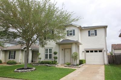 Houston Single Family Home For Sale: 2619 Skyview Ridge Court