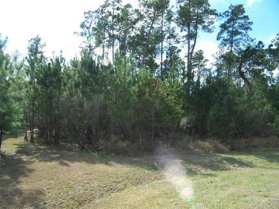 Spring Residential Lots & Land For Sale: 27323 Silver Jade Court