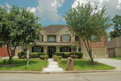 Houston Single Family Home For Sale: 14518 Jessica Falls Circle