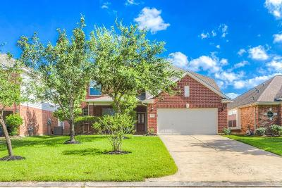Tomball Single Family Home For Sale: 12823 Carriage Glen Drive