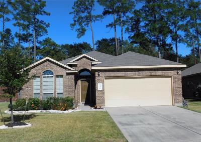 Tomball Single Family Home For Sale: 24426 Sandusky Drive