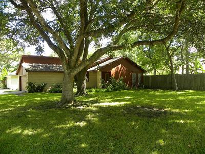League City Single Family Home For Sale: 524 Dawn Drive