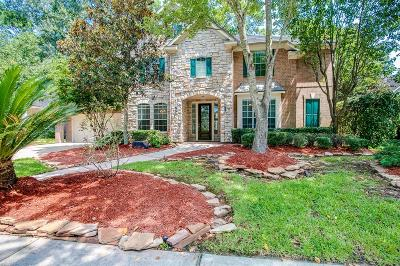 Eagle Springs Single Family Home For Sale: 18110 Enchanted Rock Trail