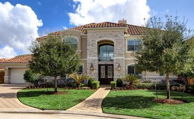 Houston Single Family Home For Sale: 1807 Lake Meadows Court