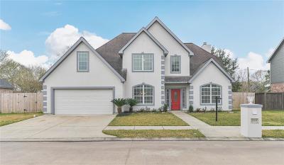 League City Single Family Home For Sale: 2203 Dove Haven Lane