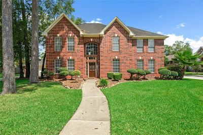 Baytown Single Family Home For Sale: 4307 Park Bend Drive