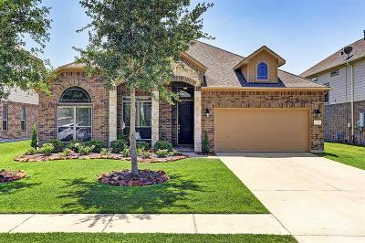 Friendswood Single Family Home For Sale: 1229 Martinez Court