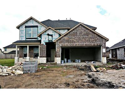 Pearland Single Family Home For Sale: 2721 Osprey Lane