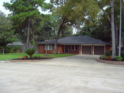 Houston Single Family Home For Sale: 10210 Eddystone Drive