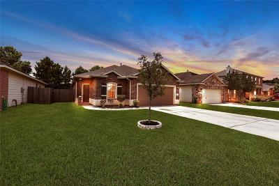 Tomball Single Family Home For Sale: 12915 Pine Meadows Street