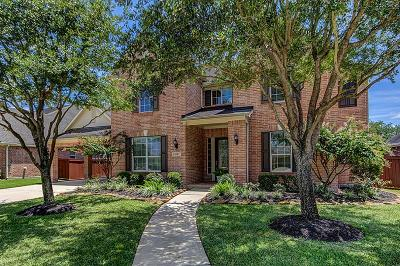 Houston Single Family Home For Sale: 6310 Tierra Lake Court