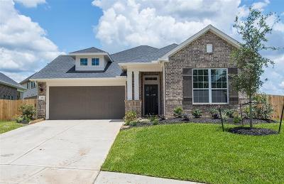 Conroe Single Family Home For Sale: 202 Pleasant Hill