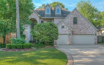 The Woodlands Single Family Home For Sale: 63 Wind Ridge Circle