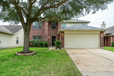 Houston Single Family Home For Sale: 6722 Shining Sumac Avenue