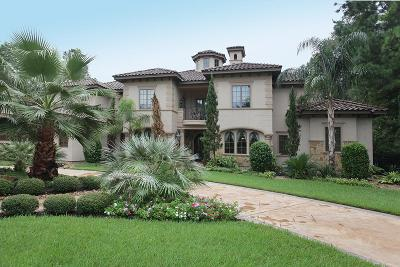 The Woodlands Single Family Home For Sale: 23 Villeroy Way
