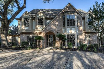 Houston Single Family Home For Sale: 811 Daria Drive