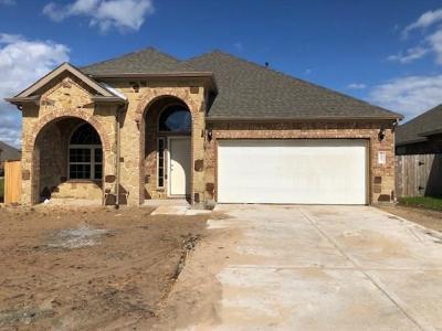 Richmond Single Family Home For Sale: 9803 Camellia Gardens Drive