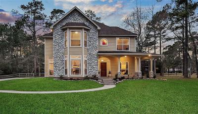 Magnolia Single Family Home For Sale: 10511 Serenity Sound