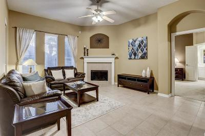 Pearland Single Family Home Option Pending: 2404 Black Canyon Lane