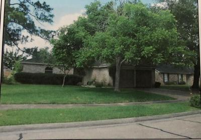 Friendswood Single Family Home For Sale: 16202 David Glen Drive