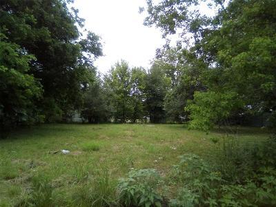 Houston Residential Lots & Land For Sale: 319 N Carolina Street