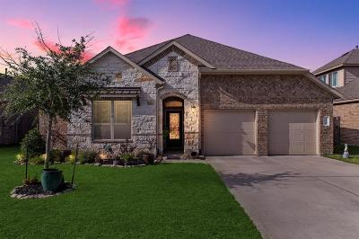 Conroe TX Single Family Home For Sale: $308,900