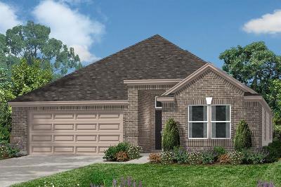 Single Family Home For Sale: 10003 Cimarron Canyon Lane