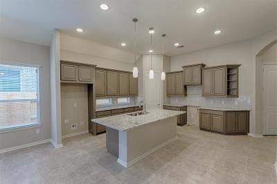 Montgomery Single Family Home For Sale: 220 Capriccio Lane
