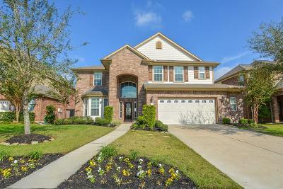 Sugar Land Single Family Home For Sale: 6715 Halstead Street