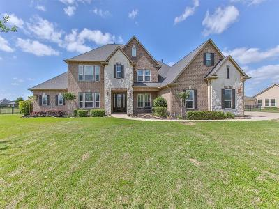 Katy Single Family Home For Sale: 4803 Shadow Grass Drive