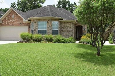 Porter Single Family Home For Sale: 20269 Southwood Oaks Drive