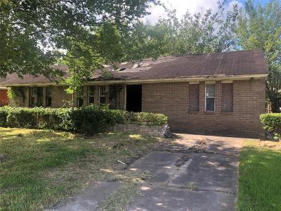 Houston Single Family Home For Sale: 4118 Tareyton Lane