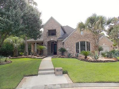 Houston Single Family Home For Sale: 2114 Forest Mountain Court