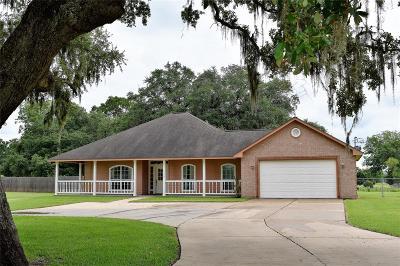 Angleton Single Family Home For Sale: 1132 Bar X Trail