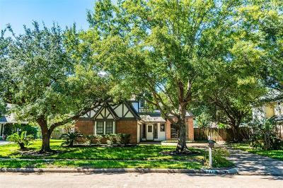 Houston Single Family Home For Sale: 9911 Jockey Club Drive